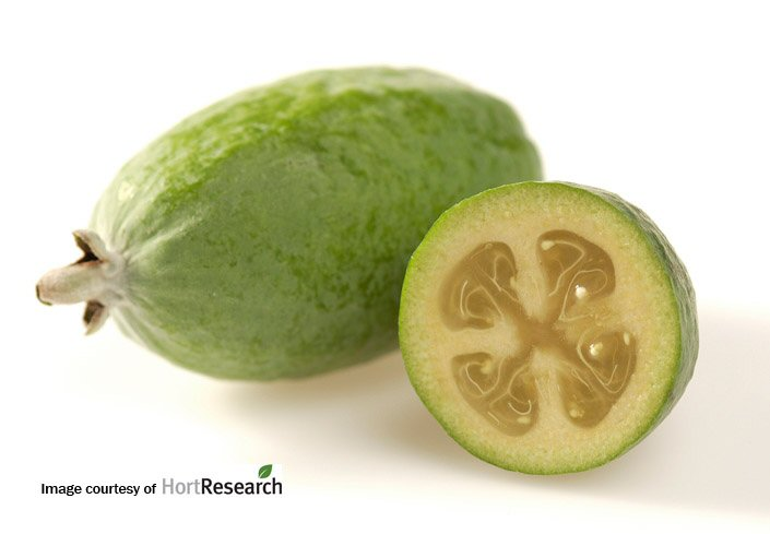 Pineapple Guava image