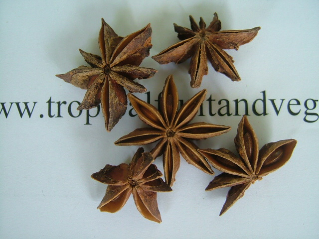 Star Anise image